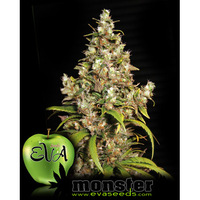 Eva Seeds Monster x3
